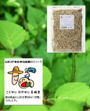 タラノキ茶(トゲ有)(タラの葉)300g(75回/45ℓ分)-送料無料(長崎県地産地消推進商品)